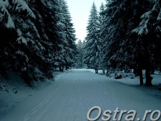 Drumul iarna