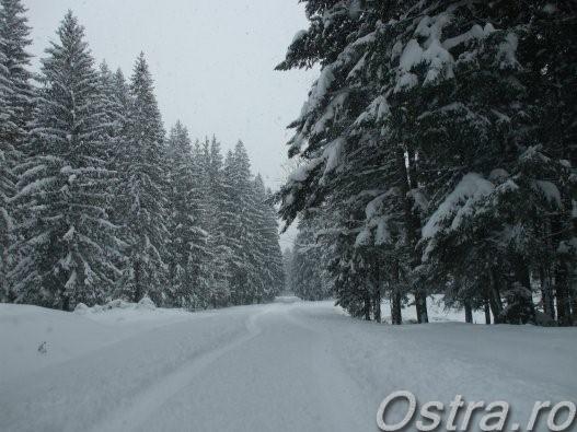 Drum de iarna