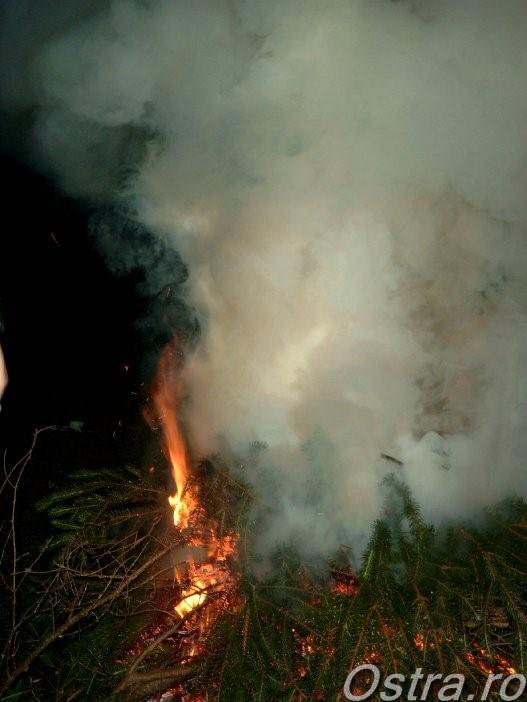 La foc