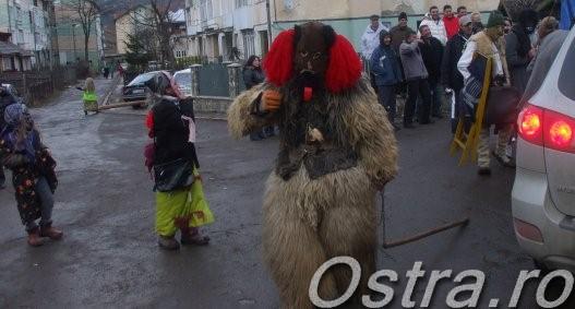 Ursul de Anul Nou
